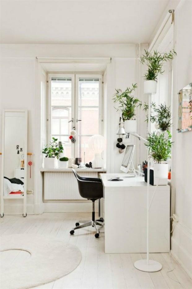 La pared pintada en blanco y las plantas verdes te aportarán frescura