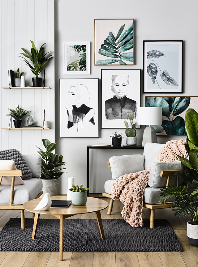 las 5 plantas que mejor depuran el ambiente