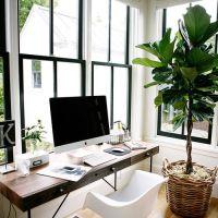 Los 10 BENEFICIOS de tener plantas en casa