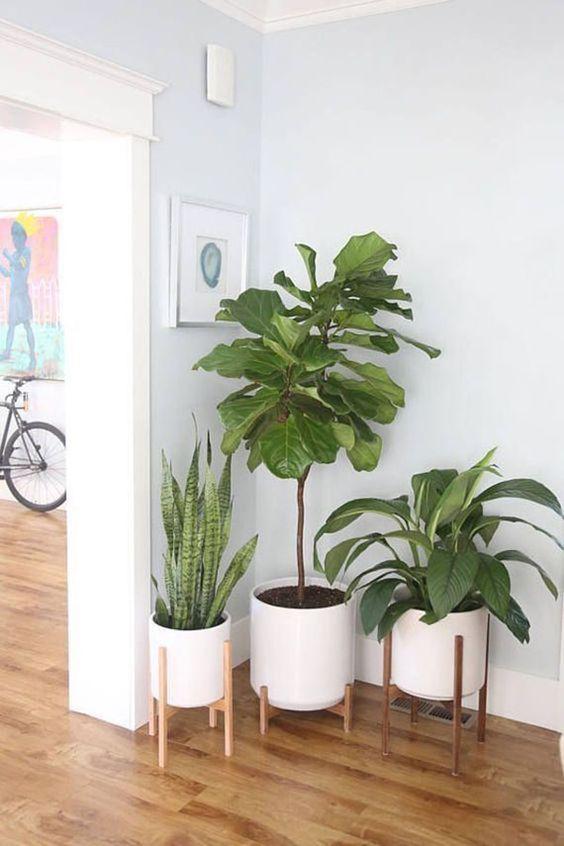 10 consejos para tu casa